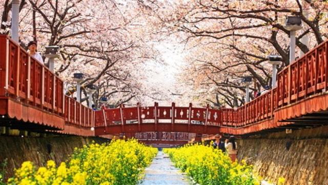 12 tempat wisata terkenal di korea selatan siskadini. Black Bedroom Furniture Sets. Home Design Ideas